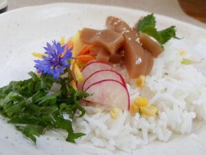 버섯묵: Steinpilzmuk auf Reis mit Frischem aus dem Garten (Foto: Sarah, 2021)
