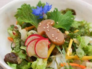 Steinpilzmuk als Salatdekoration (Foto: Sarah, 2021)