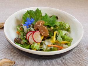 Salat dekoriert mit Shiso und Steinpilzmuk (Foto: Sarah, 2021)